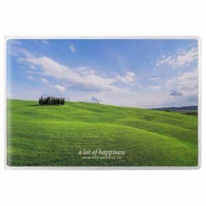 ハクバ APNP-KGY-AZO ハクバ Pポケットアルバム NP ポストカードサイズ 横 20枚収納(青空の丘)