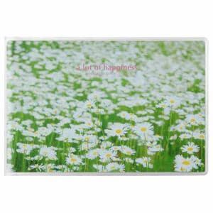 ハクバ APNP-KGY-SHB ハクバ Pポケットアルバム NP ポストカードサイズ 横 20枚収納(白い花畑)