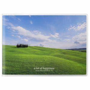 ハクバ APNP-LY-AZO Pポケットアルバム NP Lサイズ 横 20枚収納(青空の丘)