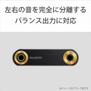 ソニー NW-ZX300-S 【ハイレゾ音源対応】デジタルオーディオプレーヤー ウォークマン WALKMAN ZXシリーズ (シルバー/64GB)