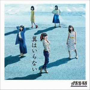 <CD> AKB48 / 翼はいらない(Type B)(通常盤)(DVD付)