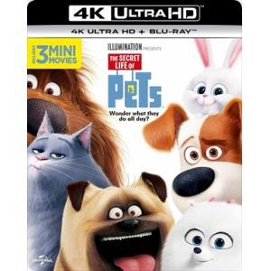 <4K ULTRA HD> ペット(4K ULTRA HD+ブルーレイ)