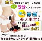 ★【エアロライフフィットネス】DR-2500 骨盤ストレッチナビ レッド