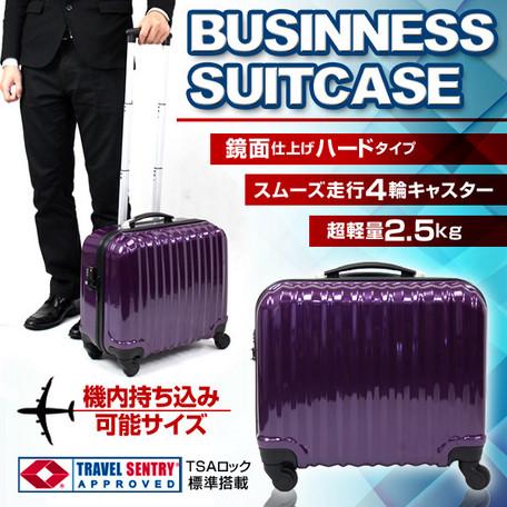 機内持込みサイズ/スーツケースC003