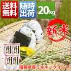米 ミルキークイーン 20kg お米 小分け 5kg 1等米 29年産 福島県 白米 ミルキークイーン 送料無料 北海道・沖縄・一部を除く