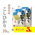 愛知県 白米 こしひかり 10kg 平成29年産 【送料無料】 北海道・沖縄・一部を除く