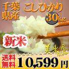 米 こしひかり 25kg お米 安い 小分け 5kg 1等米 29年産 千葉県 白米 こしひかり 送料無料 北海道・沖縄・九州・一部を除く