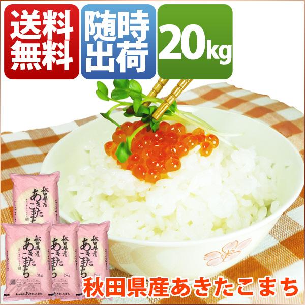 米 あきたこまち 20kg お米 安い 小分け 5kg 1等米 29年産 秋田県 白米 あきたこまち 送料無料 北海道・沖縄・九州・一部を除く