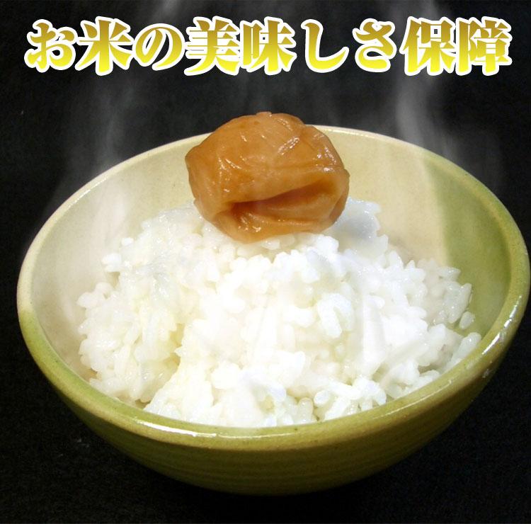 お米の美味しさ保証