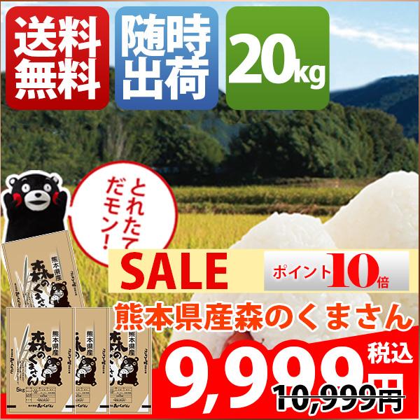 【ポイント10倍】米 20kg 森のくまさん 熊本県産 30年産 白米 小分け 5kg お米 送料無料 北海道・沖縄・一部を除く