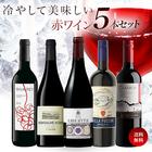 【送料無料】冷やしておいしい 赤ワイン 5本セット[常温]【3~4営業日以内に出荷】[W]