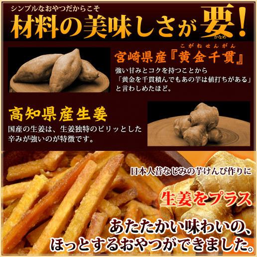 【ワンデー限定衝撃価格】2 送料無料 生姜けんぴ4個セット
