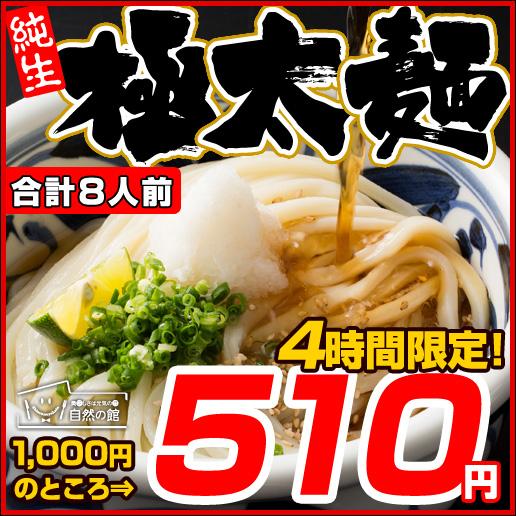 【4時間限定タイムセール 11/17 20:00~23:59】【49%OFF!】【数量限定!】伝説の極太麺8人前(200g×4)讃岐うどん 麺