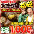 栗 甘栗 スイーツ 和菓子 有機栽培 天津甘栗480g(240g×2袋) 80gずつ小袋入り