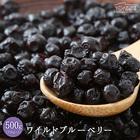 ワイルドブルーベリー 500g(250g×2) 送料無料 ドライフルーツ 保存に便利なチャック付き [ ポリフェノール豊富 アメリカ産 フルーツ 菓子材料 お試しサイズ 再入荷 自然の館