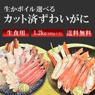 生食OK! 生ずわい蟹ハーフポーション(カット済みズワイガニ詰合せ)1.5kg(500g×3)