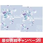 【送料無料】ピュアナチュラル プラス 55%×2箱セット 1日使い捨て ワンデー 最安値に挑戦中!