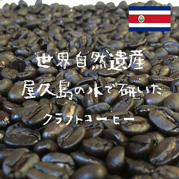 コスタリカ Coral Mountain SHB  ※※2袋まで同梱可(送料270円)