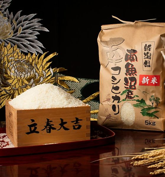 【令和2年度産 新米】南魚沼産コシヒカリ(白米)【5kg】