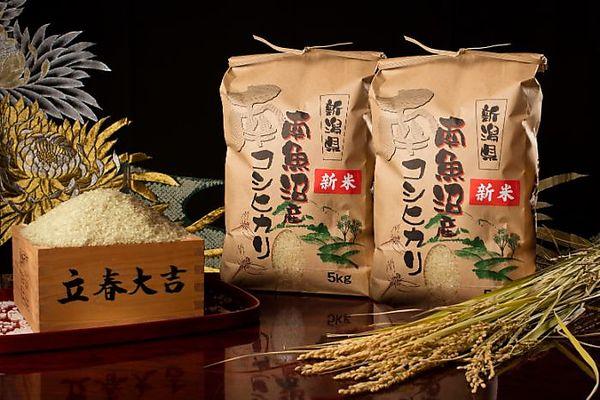 【令和2年度産 新米】南魚沼産コシヒカリ(玄米)【5kg×2袋】