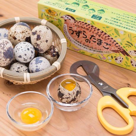 濃厚なのに後味さっぱり!うずらの生卵30個 【送料無料】