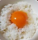 信州のこだわり ノニタマゴ(白玉10個入×3)