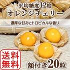 【期間限定】平川市産 オレンジチェリー(フルーツほおずき) 20粒 無農薬 2020年産 送料無料