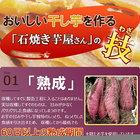 干し焼き芋×3袋