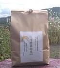 【送料無料】自然栽培米 にこまる 玄米3kg