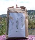 【送料無料】自然栽培米 にこまる 精米5kg