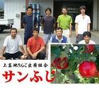 長野県上高地りんご出荷組合 しなのサンふじ  1箱(3kg入り)8~12玉