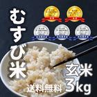 【送料無料】農家直送★食味コンクール受賞 むすび米 3kg玄米