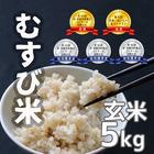 農家直送★食味コンクール受賞 むすび米 5kg玄米