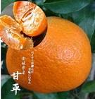 愛媛県産 甘平 M~4L寸混合 2kg入り1箱