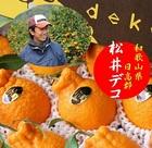 和歌山県日高郡産 松井農園 松井デコポン 1箱2.5kg(8~10玉)