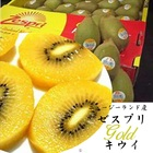 ニュージーランド産「ゼスプリ」ゴールドキウイ 2kg(12~22玉)