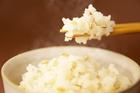【送料無料】ダイエットや成人病予防で注目 安心安全福井産100% もち麦(はねうまもち)900g