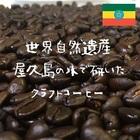 エチオピアモカ Mocha Yirgacheffee ※2袋まで同梱可(送料270円)