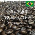 ブラジル No2 17/18 Qgrade ※※2袋まで同梱可(送料270円)