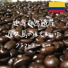 コロンビア Excelso Qgrade ※※2袋まで同梱可(送料270円)