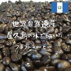 グァテマラ Huehuetenango SHB ※※2袋まで同梱可(送料270円)