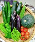 日常使用する野菜を中心とした野菜セット(100サイズ)