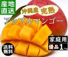 【送料無料】沖縄産 完熟 マンゴー 家庭用 優品 1キロ 2玉~4玉入り アップルマンゴー お中元 ギフトに