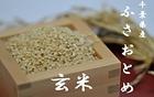 【送料無料】千葉県産ふさおとめ玄米 10kg
