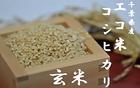 【送料無料】エコ米コシヒカリ玄米 10kg