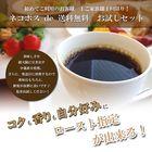 【ネコポス送料無料】焙煎指定が出来る!新鮮コーヒー豆お試しセット(200g×2種/生豆時)