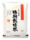 ふっくらつやつや特別栽培米【夢しずく】白米5kg(減農薬)