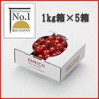 データプレミアムNo.1 ENRICHIミニトマト1kg5箱