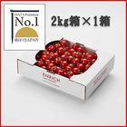 データプレミアムNo.1 ENRICHIミニトマト2kg1箱