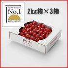 データプレミアムNo.1 ENRICHIミニトマト2kg3箱